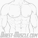 Musclesfax.in - Ivan